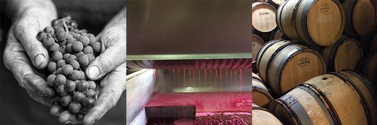 Vins rouges Chartron